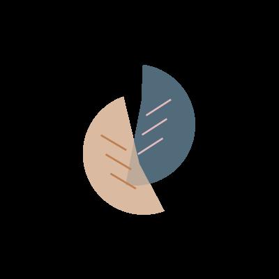 Des Plantes & Co