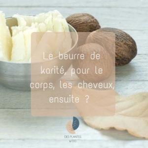 Le beurre de karité pour le corps, les cheveux, et ensuite ?