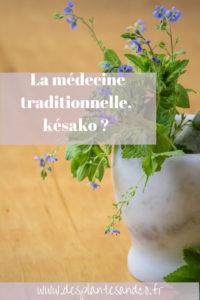 Médecine Traditionnelle Africaine, késako ?