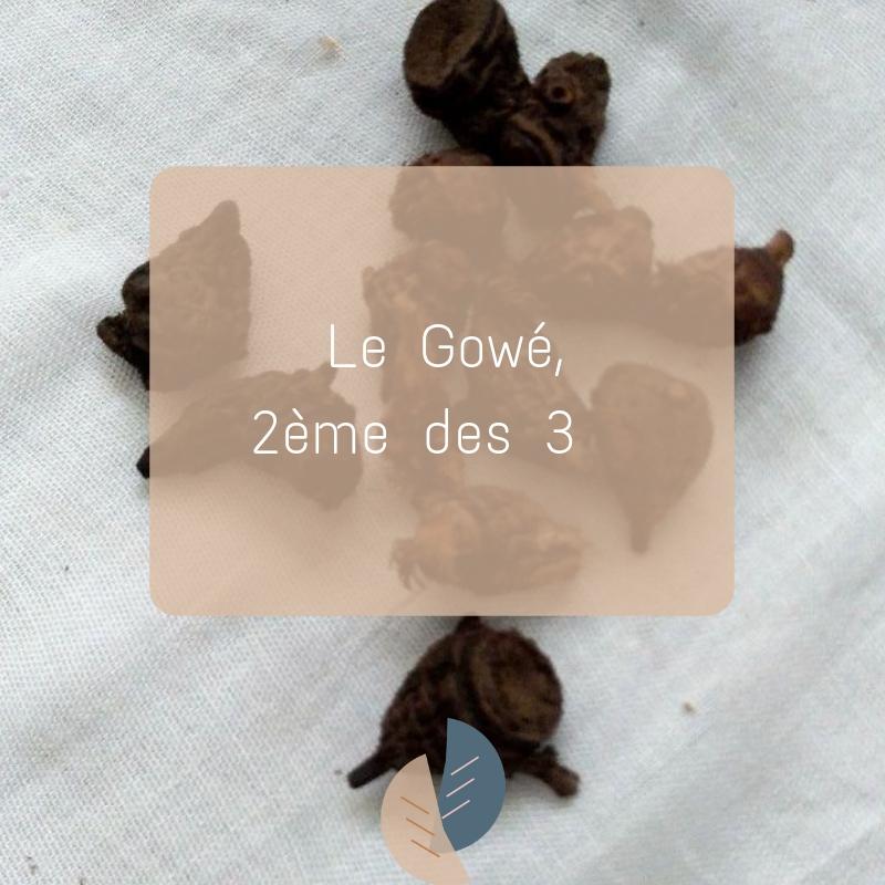 Le Gowé : la deuxième plante alliée des femmes